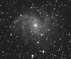 رصد ابرنواختر نوظهور در کهکشان NGC6946 با ابزارهای کوچک