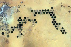 از سحابی پنجه گربه تا واحههای صحرای آفریقا